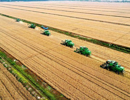 Rolul expertului de mediu în promovarea practicilor agricole durabile