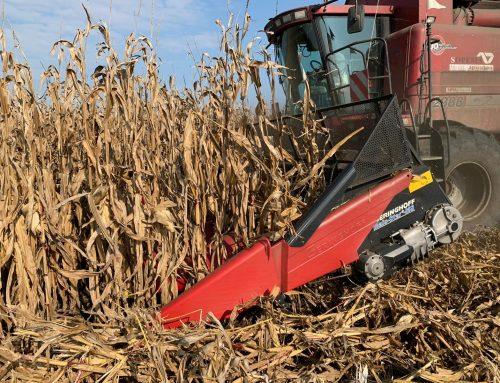 Conservarea calității recoltei cu ajutorul reglajului adecvat al combinei
